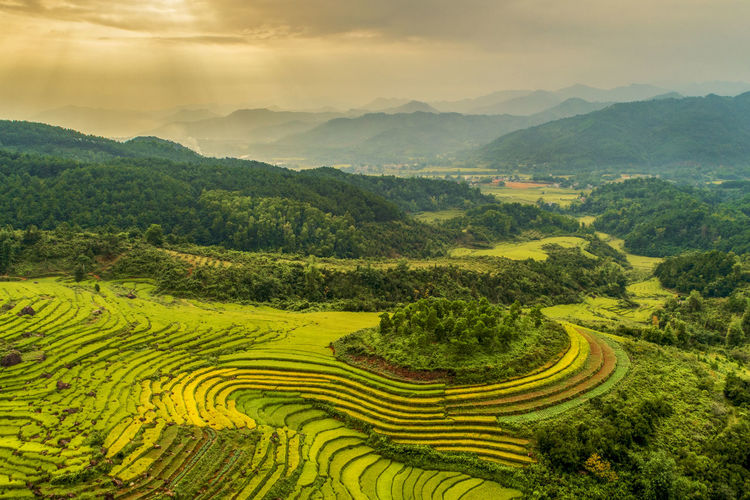 Scenics - Nature Mountain Landscape Agriculture Rural Scene Beauty In Nature Environment Farm Field Plant Cloud - Sky Tranquil Scene Sky Mountain Range Tranquility Green Color Growth Rice - Cereal Plant Nature Rice Paddy No People Outdoors Plantation Terraces