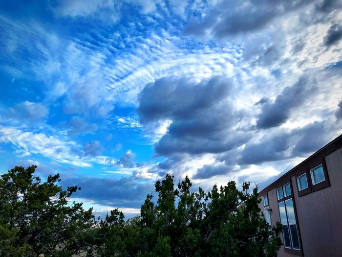 """""""Junipers, Clouds and Home"""" Dramatic clouds preside over a small cabin in the Juniper Woodlands of Central New Mexico. Dramatic Sky Junipers New Mexico Photography New Mexico New Mexico Skies Clouds And Sky Clouds Cloud - Sky Sky Tree Low Angle View Nature Beauty In Nature"""