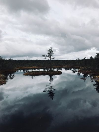 Made With IPhone 7 No Effects No Filter Cold Autumn Cloud - Sky Sky Water Reflection Tranquility Tree Nature Waterfront Lake No People Tranquil Scene Beauty In Nature Scenics - Nature Plant Day Non-urban Scene Outdoors Symmetry Standing Water Reflection Lake