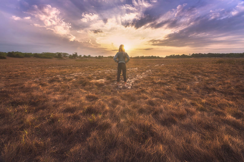 Rear view of man standing on land against sky during sunset