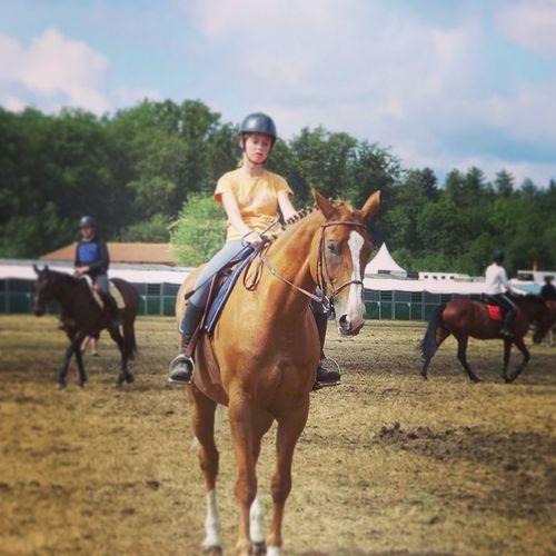 Horse Horseriding Cheval Jument Koquette de bles, precée!!!!!!!!❤✌✌