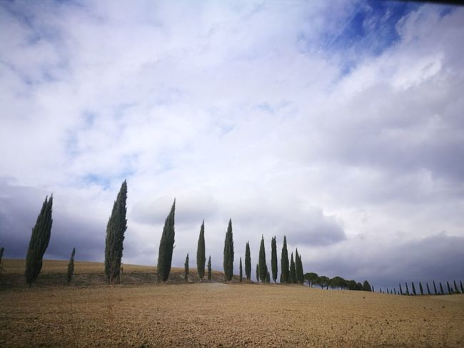 Cloud - Sky Field Landscape No People Rural Scene Toscana ITALY Water Smartphone Photography Autumn🍁🍁🍁 Malinchonic Landscape