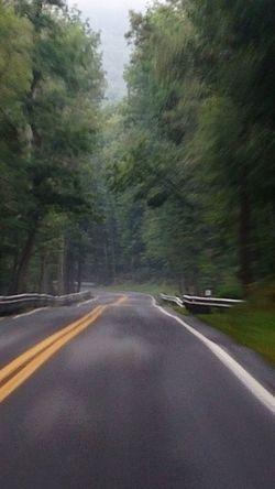 Longandwindingroad Roadtrip Driving