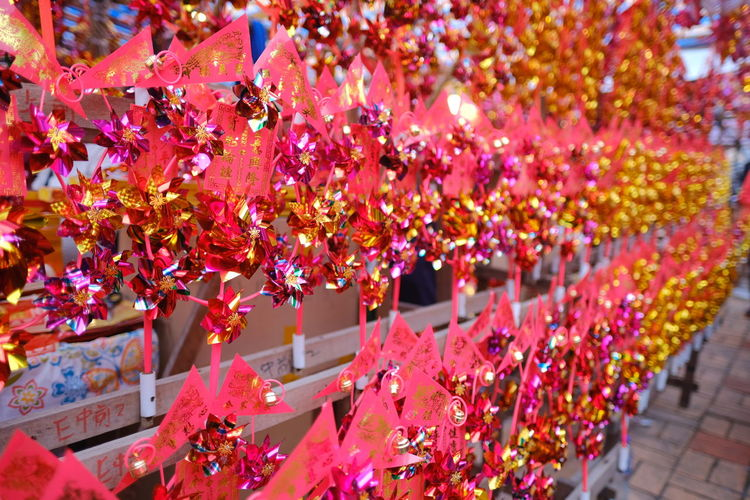 Close-up of multi colored flowering plants hanging at market stall