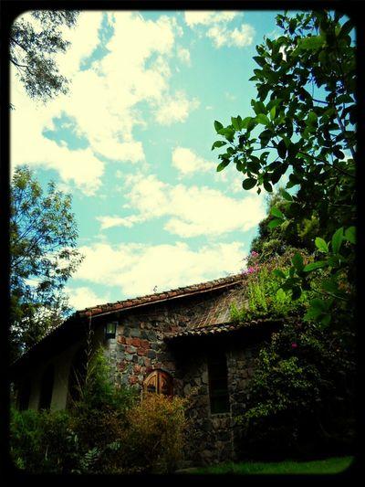 Enjoying Life Wonderland Beatiful Place Sky And Trees