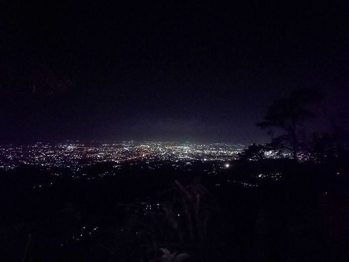 Adapted To The City Night Sky City Nature Outdoors Cityscape Cebu City, Philippines