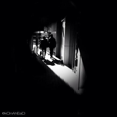 Awash In Light