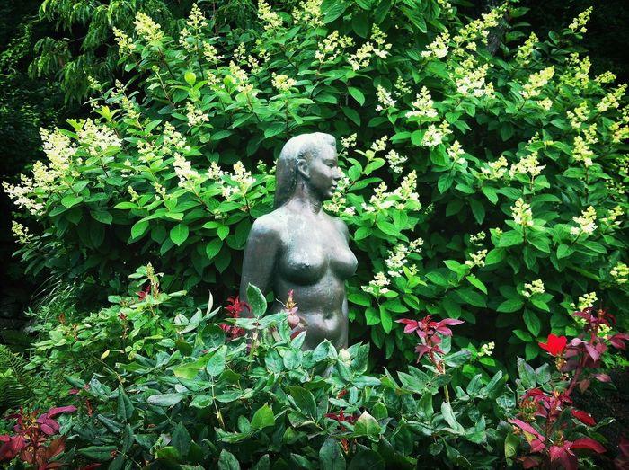 besutiful sculpture garden at OMAA Art