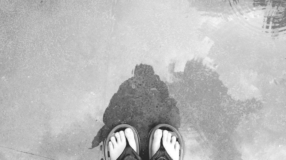 Reflections Rain