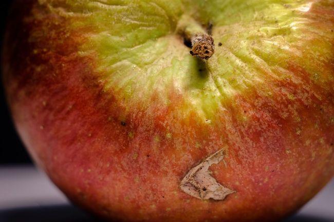 Eat More Fruit Macro Macro_collection Aples