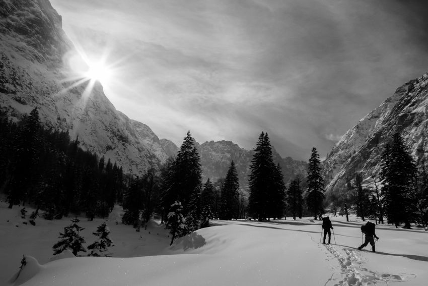 Snow shoe hiking in a winter wonderland. Snow Winter Cold Temperature Winter Sport Skiing Sport Ski Holiday Leisure Activity Adventure Frozen Nature Sunlight People Outdoors Tree Sky