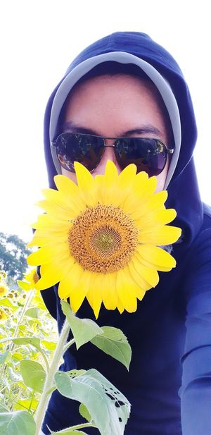 let it be my Love ..😍🌻🌞😎 Love Flower Outdoors A New Beginning Flower Head Flower Yellow Beauty Close-up Sunflower Blooming In Bloom Blossom Plant Life Single Flower Fragility