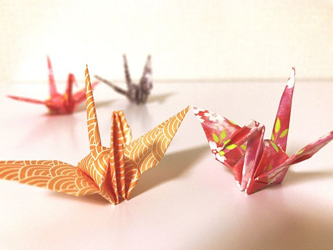 Crane. No People Close-up Paper Gold Colored Indoors  Day おりがみ 鶴 Table 折り紙