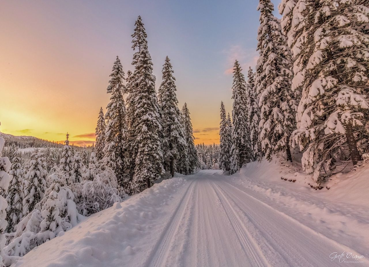 cold temperature, snow, winter, weather, nature, beauty in nature, scenics, tranquil scene, tranquility, no people, the way forward, tree, outdoors, transportation, landscape, sunset, sky, clear sky, day