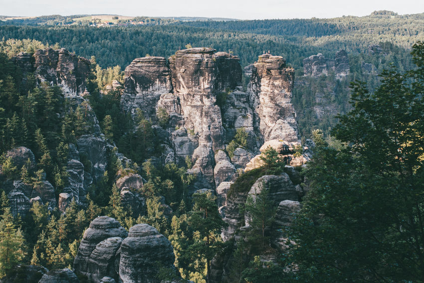Elbsandsteingebirge Landschaft Nationalpark Sächsische Schweiz Wanderlust Cliff Gestein Landscape Landscapephotography Mountain Nature Rock Rock - Object Saxony Switzerland Sächsische Schweiz Travel Travel Destinations Tree