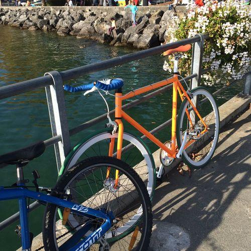 Bicycle Port