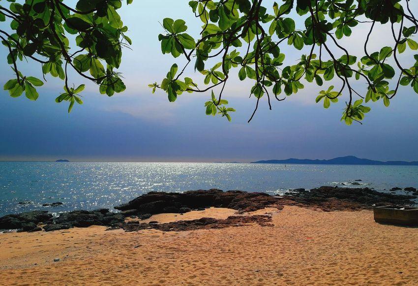 sae Thailand🇹🇭 2018 Beuty In Natru Tree Water Sea Beach Summer Sky Horizon Over Water EyeEmNewHere