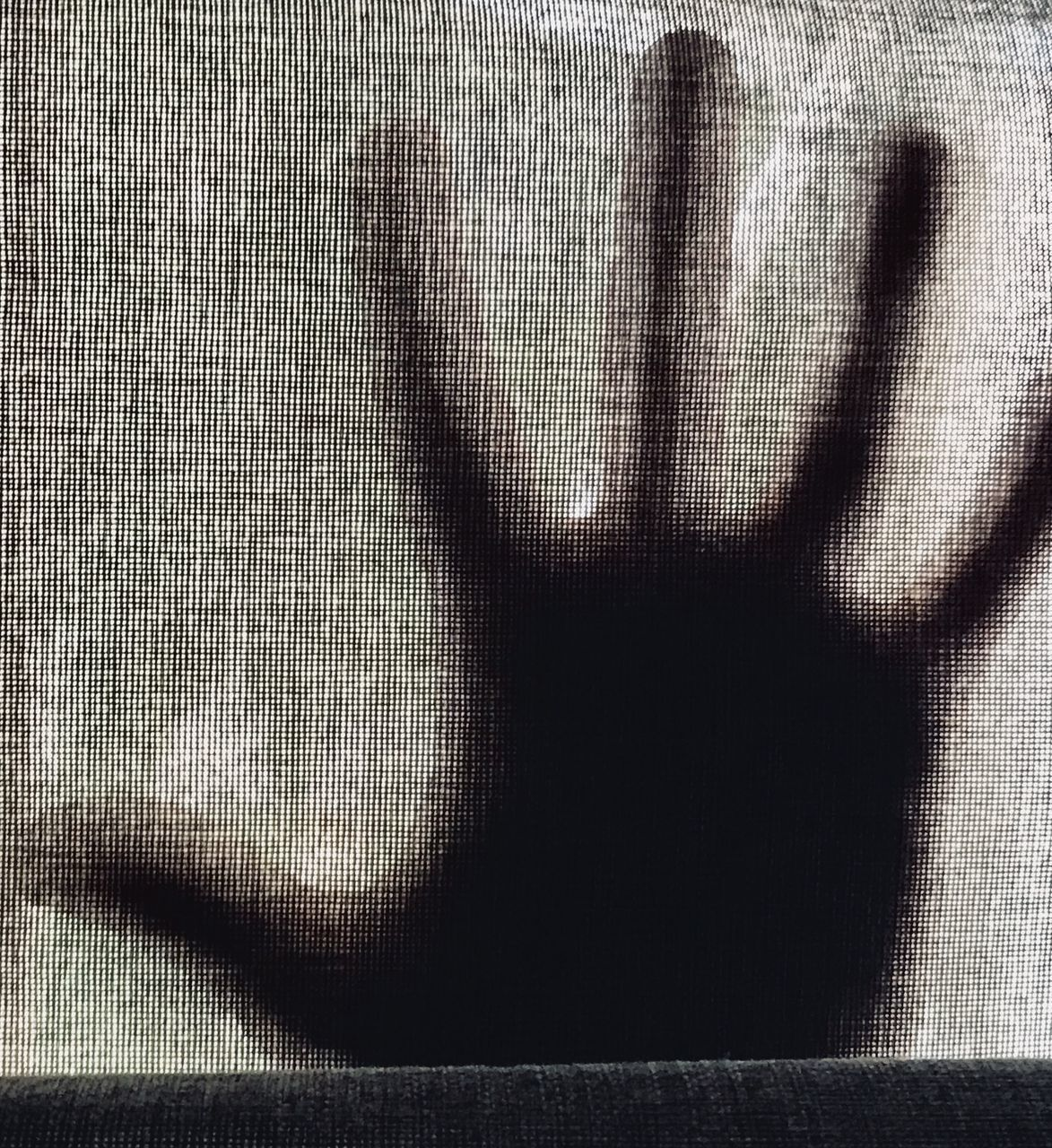 shadow, real people, one person, indoors, day, close-up, lifestyles, human hand, people