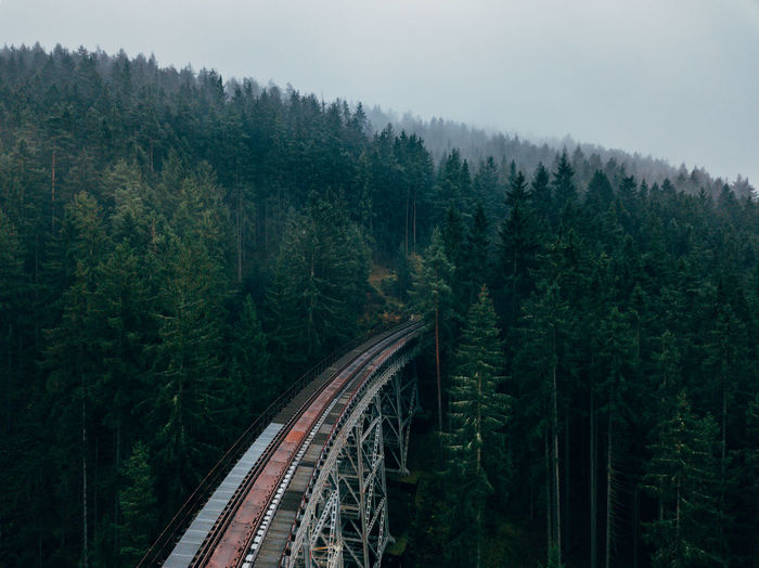 Ziemesthalbrücke Germany Aerial Shot Djimavicpro Green Wanderlust Aerial View Beauty In Nature Bridge Canada Day Dji Fog Foggy Forest Germany High Angle View Nature No People Outdoors Pine Woodland Pinetrees Railroad Scenics Transportation Tree Woods Perspectives On Nature EyeEmNewHere