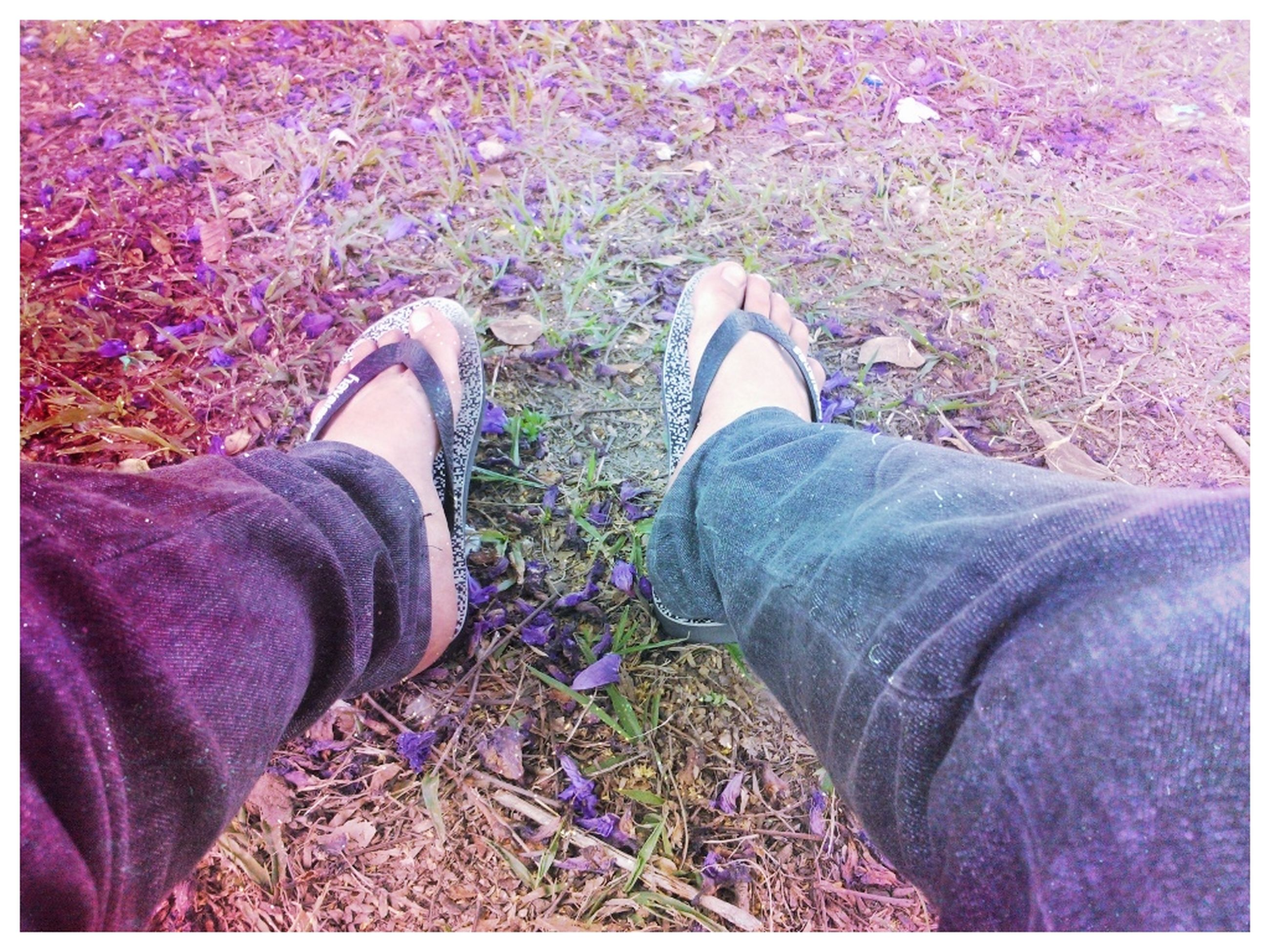 low section, person, shoe, personal perspective, transfer print, auto post production filter, lifestyles, footwear, human foot, jeans, high angle view, leisure activity, men, field, standing, unrecognizable person, grass