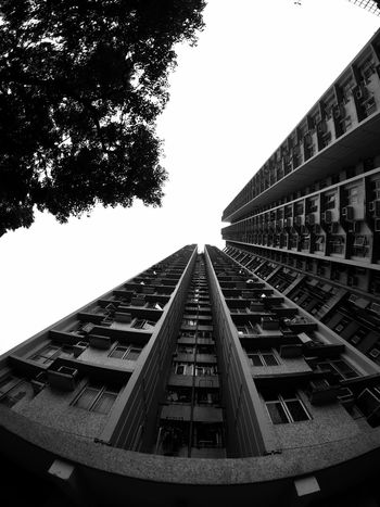 Architecture Building Exterior Tree Clear Sky Building And Sky Low Angle View High Rise Apartment Building Facade Architecture IPhoneography Moment Lens Superfish Light And Shadow Black & White Pattern, Texture, Shape And Form Urban Geometry Building And Tree Architectural Design Black And White Urban Architecture