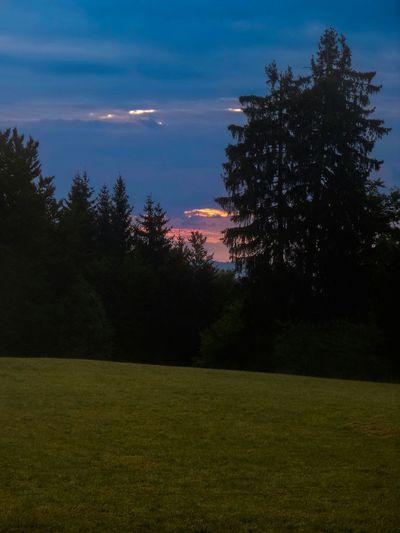 Sunset Silhouettes Morning Sky Nature EyeEm Gallery Eye4photography
