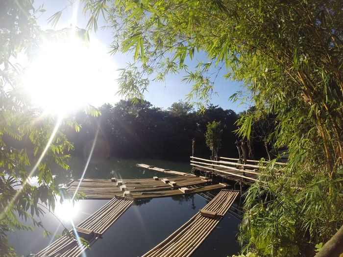 Province Lake Raft Bamboo Quiet Peace Fresh Air Nature Rejuvinate Yoga Hideaway Getaway  Vacation Recluse Hike Tree Water Sunlight Sun Lens Flare Sunbeam Sky Countryside River Calm Riverbank Riverside Scenics Tranquil Scene Waterfront