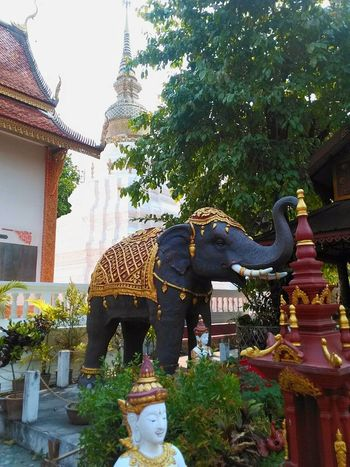 Elephant Statue Sculpture Gold Celebration Architecture Chiang Mai | Thailand Budismo Año Nuevo  Dorado Año Nuevo  Buddhism Año Nuevo  Buddhist Temple Travel Destinations Thailand Goodluck Año Nuevo  Travel Religion Thai Pagoda Chiang Mai Songkran Festival Thai New Year Water Festival