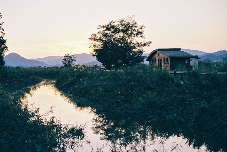 Beauty In Nature Tree House Sky Clear Sky Nature Mountain Film Film Photography Film Is Not Dead Suncheon Bay Film Camera