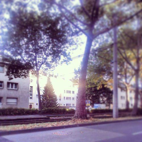 Guten Morgen Köln :)