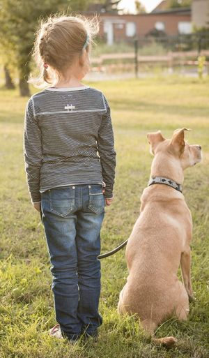 Side by side Dogs Tranquility Bestfriends Dog Love Dogs Of EyeEm Bestfriend ♥ Animal Themes Outside Photography Girl Hunde Sunny Hunde Liebe ♡ Animals Dogslife Dog❤ Animal And Human Beautiful Beste Freunde ♥ Bestfriend Sunrise Backlight