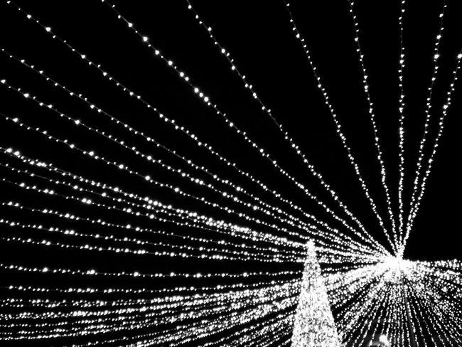 EyeEm Eyeemphotography Light Light And Shadow Beautiful Colors Blackandwhite Black & White Lights Shadowsinthedark Wintertime EyeEm Gallery EyeEm Best Shots Landscape_Collection Winternights Romania Bucharest Nightphotography Night Lights Nightshot