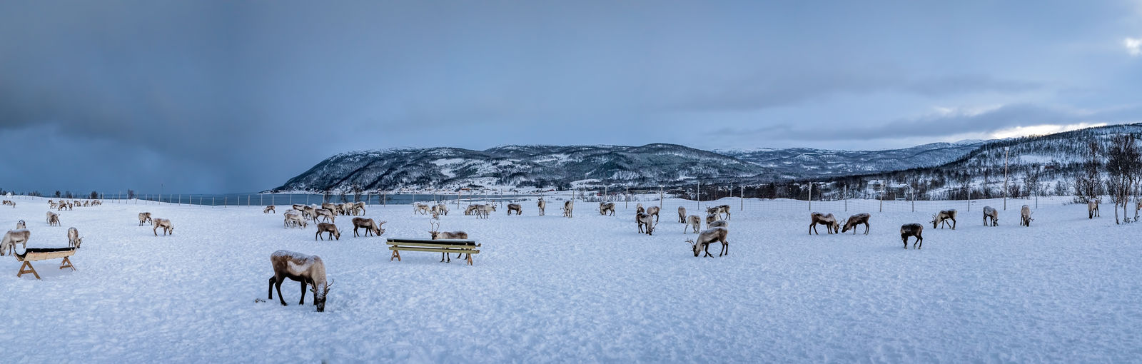 Panoramic view of people on snow covered landscape against sky