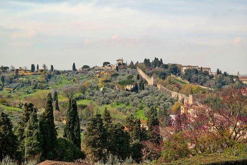 Tuscany's Spring 🌱 Ig_tuscany Ig_florence Springtime Frühling Proljece Primavera Spon_reise_landschaft