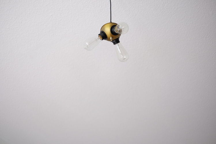 Low angle view of hanging light bulbs against white wall