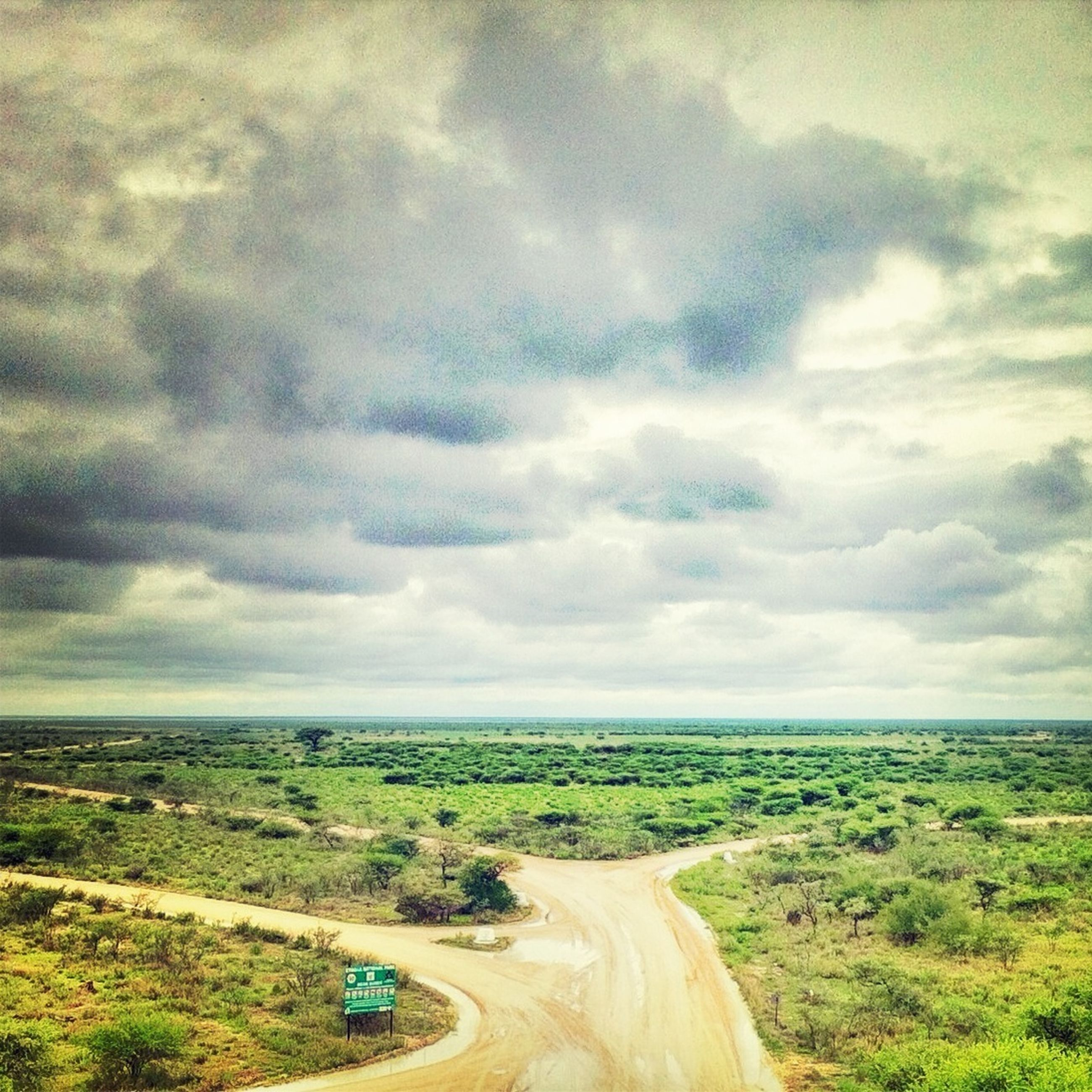 sky, landscape, cloud - sky, field, grass, domestic animals, cloud, tranquil scene, cloudy, transportation, nature, tranquility, scenics, mammal, road, beauty in nature, dirt road, horizon over land, non-urban scene, day