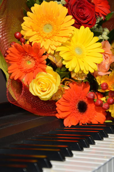Paint The Town Yellow Piano Yellow Flower Boquet Of Flowers Flower Head Indoors  Multi Colored Music Musical Instrument No People Petal Raw Image Yellow