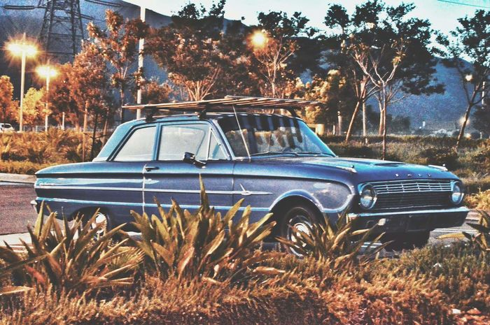 vintage Car Abandoned No People Day Outdoors Nature Sky Full Length Classic Car Classic Ford Vibes Summer Views Vintage Vintage Photo Vintage Cars EyeEm Best Shots Art Is Everywhere Sunset Mid-day Summer Vibrant Color Vivid Colors Blue Car Restored Vehicles Transportation Tree California Dreamin Summer Exploratorium
