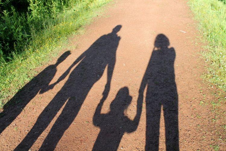 Shadows Shadows & Lights Family Forestwalk Sunday Path Naturelover EyeEm Nature Lover