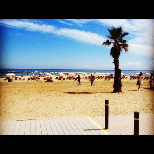 Barcelona Summer Sun Friends Having Fun Happy People Beautiful Love Enjoying Life Traveling