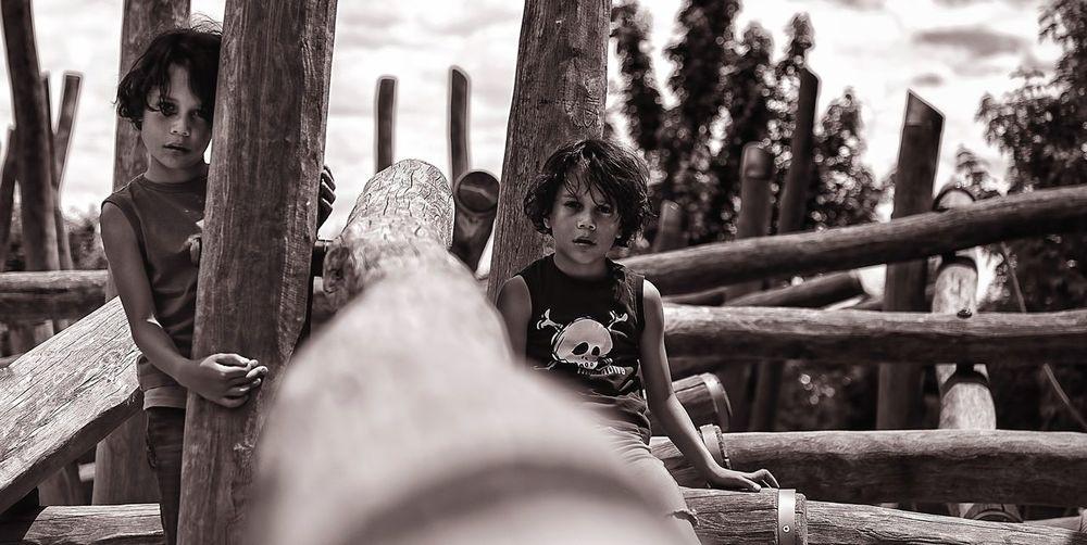 Portrait of boys sitting by wooden logs