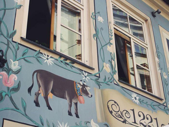 Riga Latvia Letland Cow