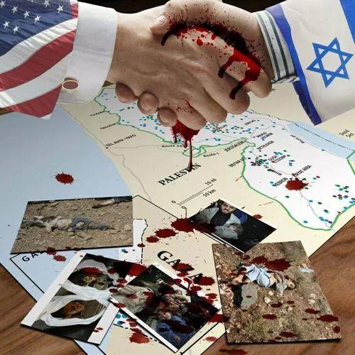 Palestine Gaza FREEDOM FOR GAZA Freegaza