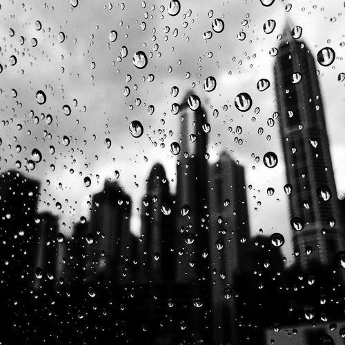 Rainy day of Dubai Close-up Drop Dubai Dubai Buildings Dubai Rainy Day Dubaicity Focus On Foreground Glass - Material Rain Rain Of Dubai RainDrop Rainy Days Weather Wet Window