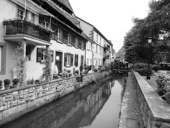 Alsace Architecture Black & White Black And White Blackandwhite Blackandwhite Photography Building Exterior Built Structure Canal Day House No People Old Town Reflection Residential Building Residential District Residential Structure Sky Tree Water Water Reflections Water_collection Watercity Waterfront Wissembourg