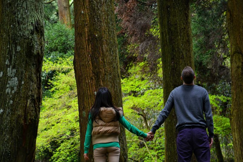 Rear View Of Couple Holding Hands Against Trees At Forest