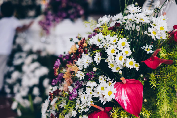 Bereavement Burial Event Beauty In Nature Bouquet Bunch Of Flowers Ceremony Close-up Condolence Day Flower Flower Arrangement Flower Head Flowering Plant Focus On Foreground Freshness Funeral Growth High Angle View Multi Colored Nature Occasion Petal Plant Vulnerability  The Still Life Photographer - 2018 EyeEm Awards Autumn Mood A New Perspective On Life Holiday Moments