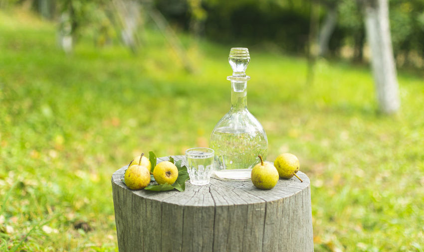 Fruits on table in field