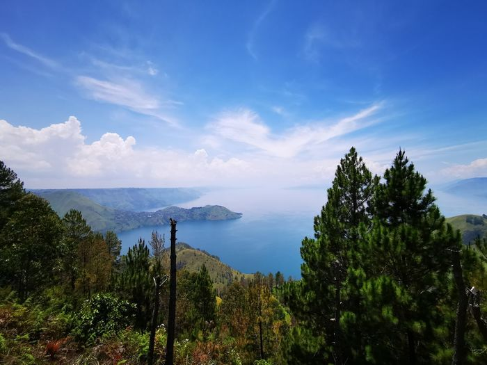Toba Lake Tree Water Tree Area Blue Forest Sky Cloud - Sky Landscape