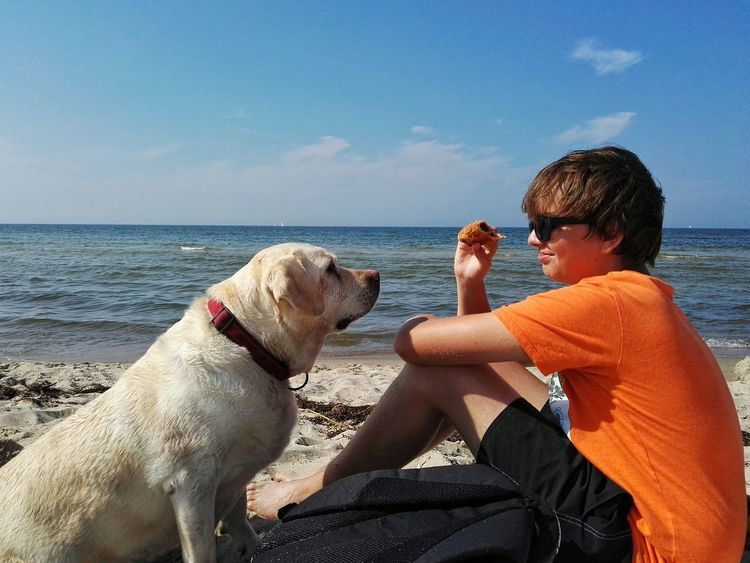 Travel With Pet Travel With Dogs Feeding Dogs Boy And Dog Seaside Summertime Summer Views Summer Landscape